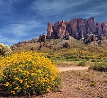 Springtime In The Superstition Mountains by James Eddy