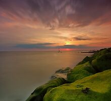 Blob On The Seascape by jakeof