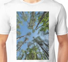 Looking up at the Cypress Trees Unisex T-Shirt