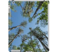 Looking up at the Cypress Trees iPad Case/Skin