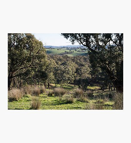 A Valley from Strathewan road Victoria Australia 20160613 7122 Photographic Print