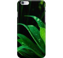 Light in the Jungle iPhone Case/Skin
