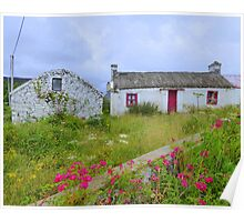 The Summer Blooms Of Rural Ireland Poster