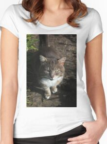 Hungry kitty Women's Fitted Scoop T-Shirt