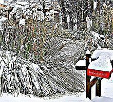 Snow Caps by TRobinP