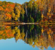 Autumn forest reflecting in still water art photo print Sticker