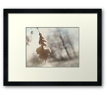Abstract fall nature scenery of frozen leaf in rain art photo print Framed Print