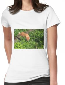 Ginger cat hunting in garden Womens Fitted T-Shirt