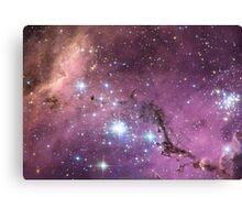 Large magellanic cloud Canvas Print