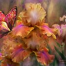 Iris - Goddess Of Sunrise by Carol  Cavalaris