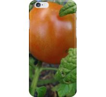 Ripen on the vine iPhone Case/Skin