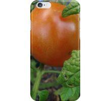 Ripen on the vine iPhone Case/Skin
