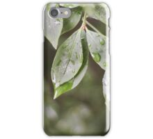 Raindrops on Leaves iPhone Case/Skin
