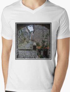 Artena Italy Mens V-Neck T-Shirt