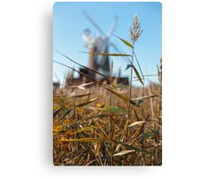 Wheat and Windmill Canvas Print