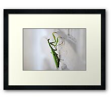 Long Journey... Framed Print