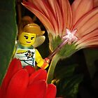 Fairy in the Flowers by Shauna  Kosoris