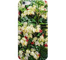 Grandmas Garden  iPhone Case/Skin