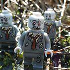 Zombies! by Shauna  Kosoris