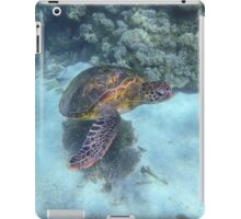 Turtle Awakens, Western Australia iPad Case/Skin