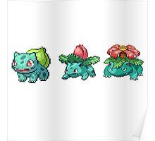 Bulbasaur Pokemon Evolution Chain Poster