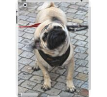 """Saying """"no"""" before someone finishes their question. iPad Case/Skin"""