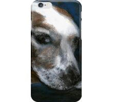Portrait of an Old Dog iPhone Case/Skin