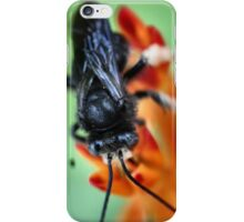 Black Bumble Bee iPhone Case/Skin