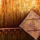 Rusting Tanker Train  by Larry Costales