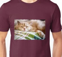 Lazy day for Mr. Cesare Unisex T-Shirt