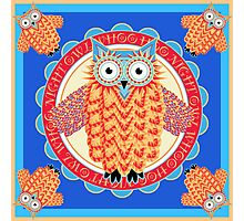 Colorful Night Owl Photographic Print