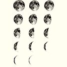 Moon Phases by wolfandbird