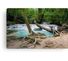 Jungle Stream in Thailand Canvas Print