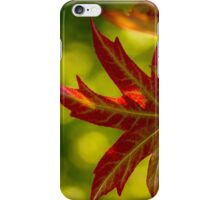 Maple Leaves 2 Perspective #2 iPhone Case/Skin