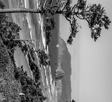 Cannon Beach View- Black and White Perspective #2 by mspixvancouver