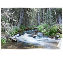 Cony Creek Flowing Poster