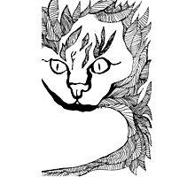 Leaf Cat Photographic Print