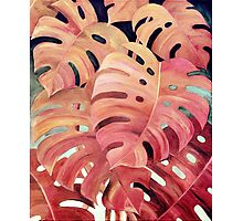 Monstera Love in Magenta and Coral - oil painting Photographic Print