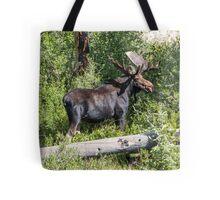 RMNP Bull Moose Tote Bag