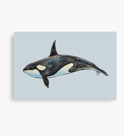 Orca on blue Canvas Print