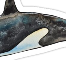 Orca on blue Sticker