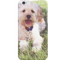 Happy Puppy iPhone Case/Skin
