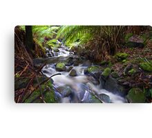 Browns River Canvas Print
