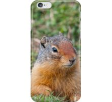 The Ground Squirrel iPhone Case/Skin