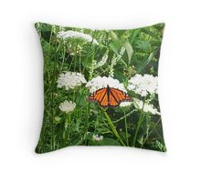 Queen Anne's Lace Monarch Throw Pillow