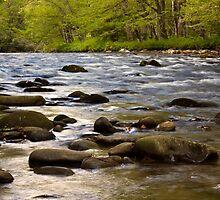Oconaluftee River by Trent Sizemore