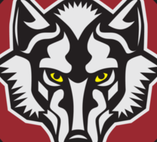 Mystic Falls Timberwolves Sticker