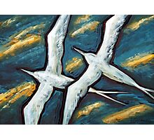 Together in the Wind Photographic Print