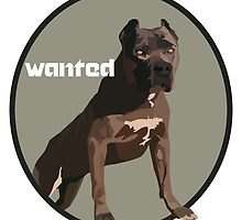 Wanted  by nervenauf