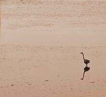 Tsawwassen Heron- Sepia by mspixvancouver